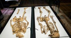 تفرقوا 1000 سنة.. لم شمل محاربين من الفايكينج تربطهم صلة قرابة بمتحف بالدنمارك