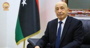 رئيس مجلس النواب الليبي: مصرون على إجراء انتخابات رئاسية وبرلمانية في موعدها المقرر