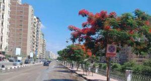 زراعة أشجار زينة بكورنيش طنطا وتعميم الفكرة فى الشوارع الرئيسية بالمحافظة