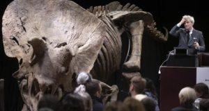 الأثرياء يحرمون المتاحف من هياكل الديناصورات